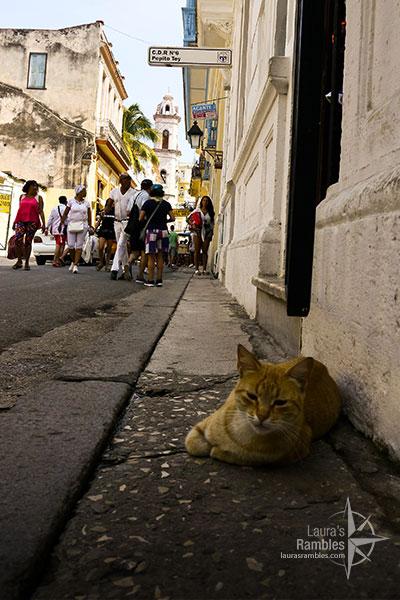 portrait-Cuba-1