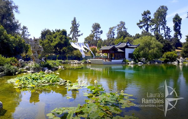 Japanese Garden at The Huntington. Beautiful garden with a café to buy ginger watermelon lemonade and relax.